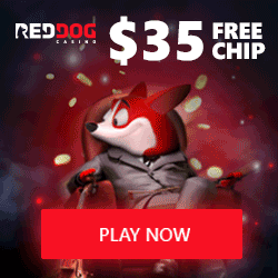 Red Dog Casino